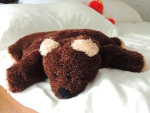Resting Teddy